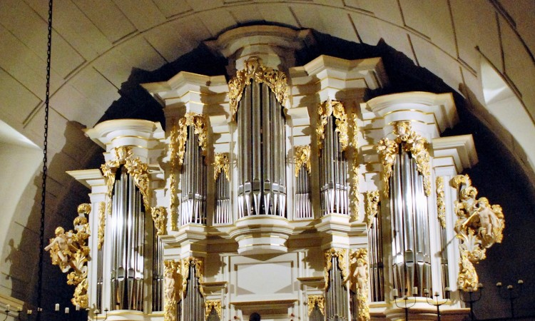 Orgel in Arnstadt - Bild G.J. Dekas (c) 2016
