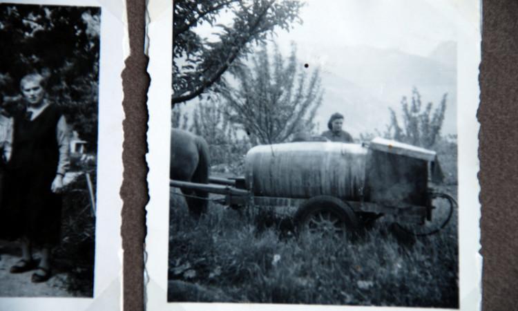 """Tante Luise beim """"Spritzponzn"""" 1942. Stiefmutter Kressen ist skeptisch Bilder aus dem Dekas-Album Schlanders"""