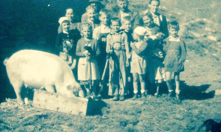 Eine Sau, so ein Glück für alle - Bild privat (c) 1955